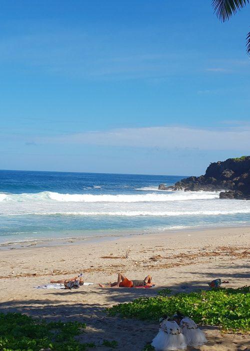 beach-4836007_1920